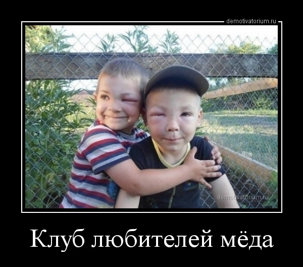 klub_lubitelej_meda_164022.jpg