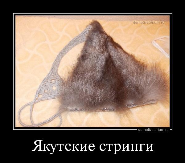 jakutskie_stringi_164638.jpg