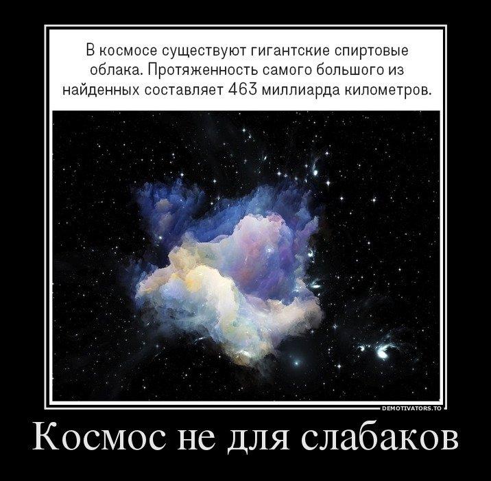 1538981270_demotivatory-6.jpg
