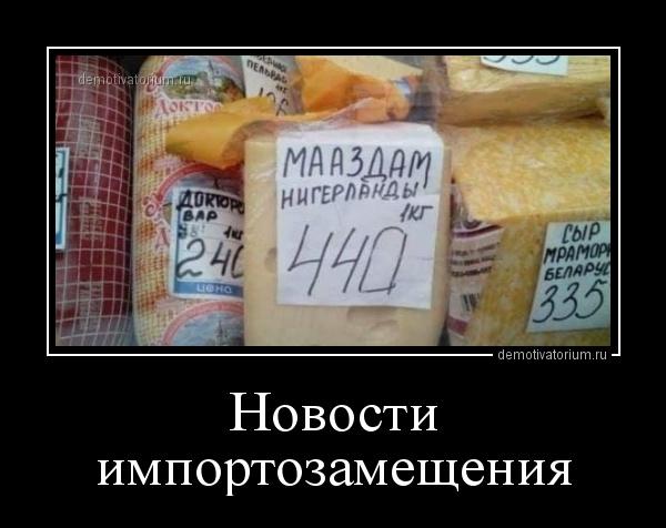 novosti_importozameshenija_164896.jpg