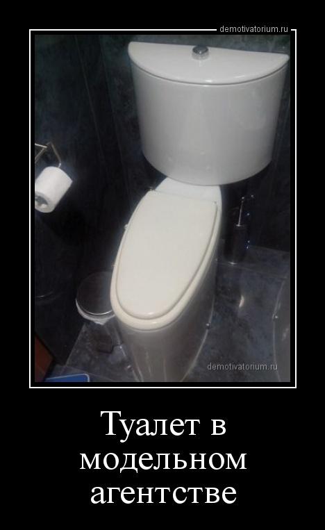 tualet_v_modelnom_agentstve_164162.jpg
