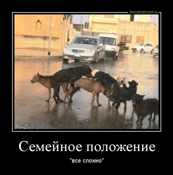 semejnoe_polojenie_165396.jpg