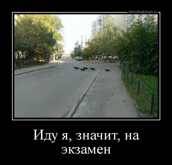 1539932071_demotivatory-1.jpg
