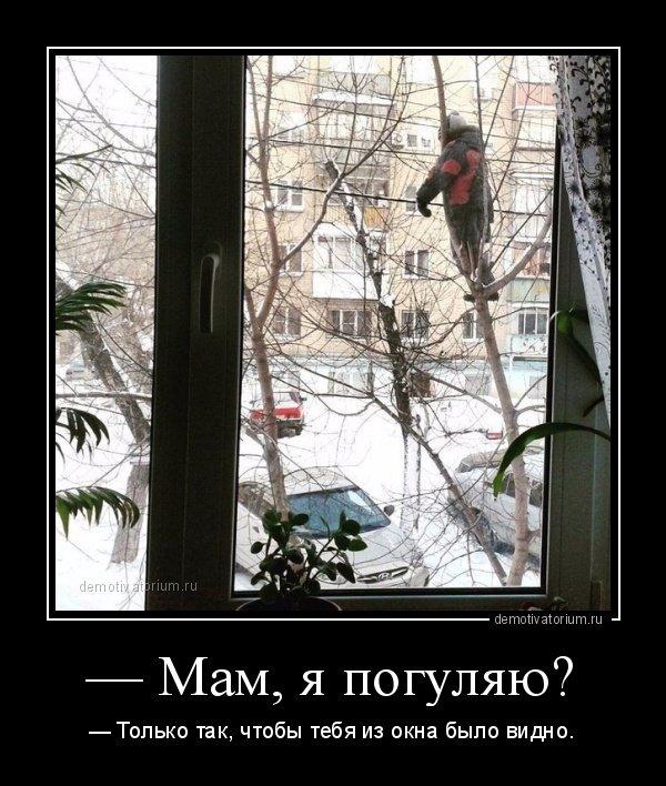 1539846568_demotivatory-10.jpg