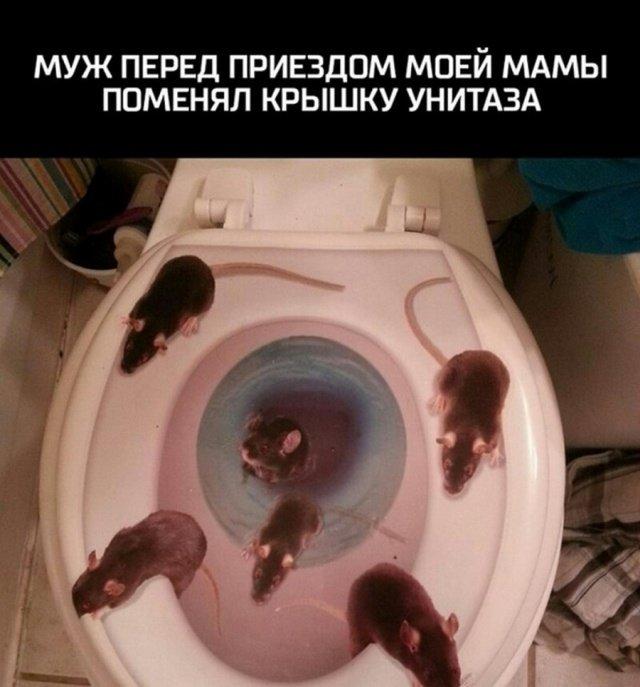 jumor_na_raznye_temy_35_foto_25.jpg