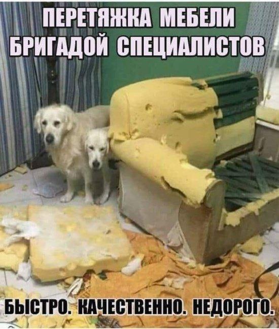 fotopodborka_sredy_82_foto_8.jpg