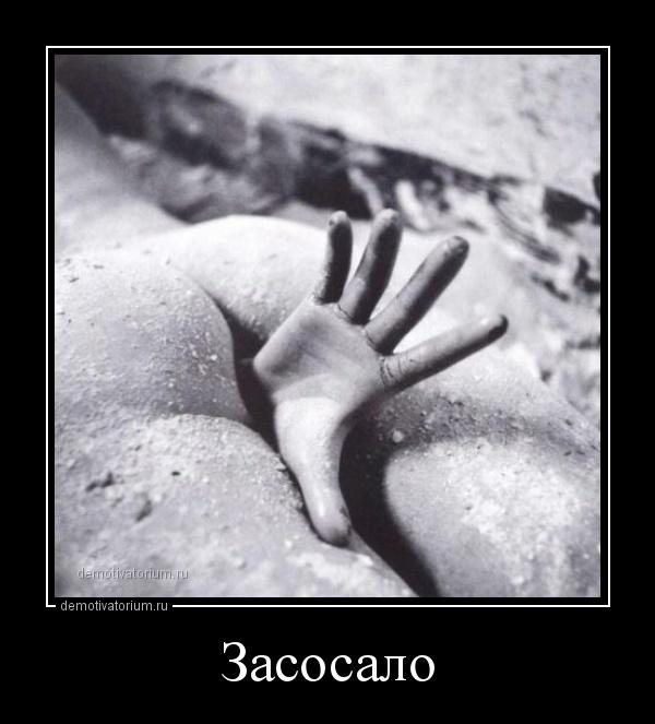 zasosalo_165563.jpg