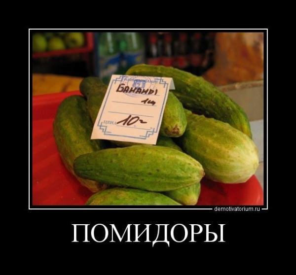 1540536610_demotivatory-3.jpg