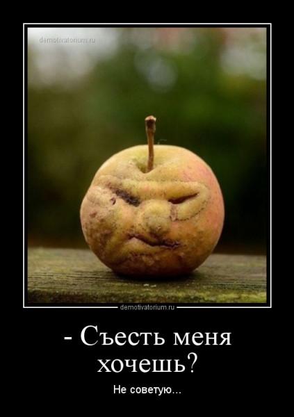 _sest_menja_hochesh_165985.jpg