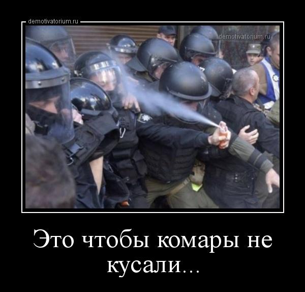 eto_chtobi_komari_ne_kusali_165515.jpg