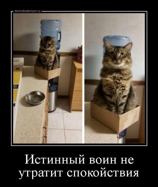 istinnij_voin_ne_utratit_spokojstvija_166127.jpg