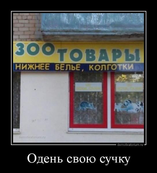 oden_svou_suchku_165814.jpg