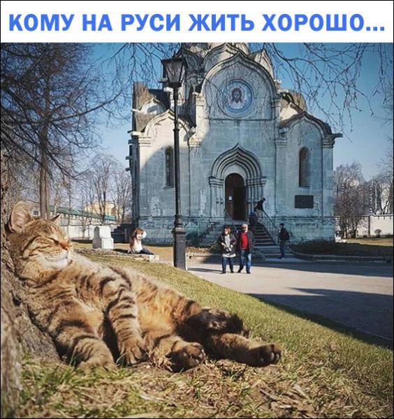 1541527258_foto-22.jpg