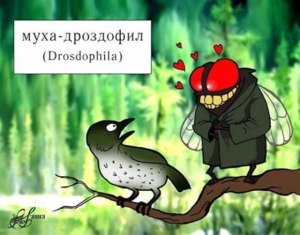 fotopodborka_chetverga_84_foto_19.jpg