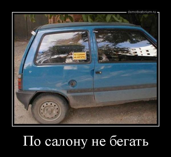 po_salonu_ne_begat_165918.jpg