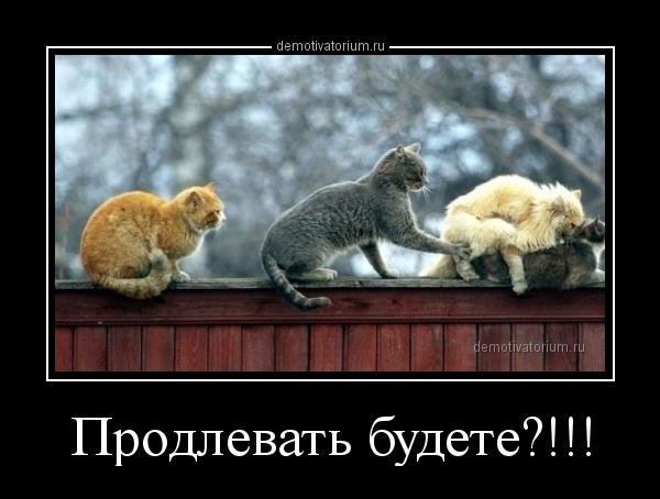 prodlevat_budete_165972.jpg