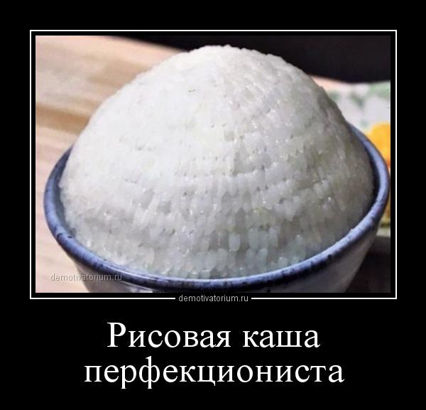 risovaja_kasha_perfekcionista_165040.jpg