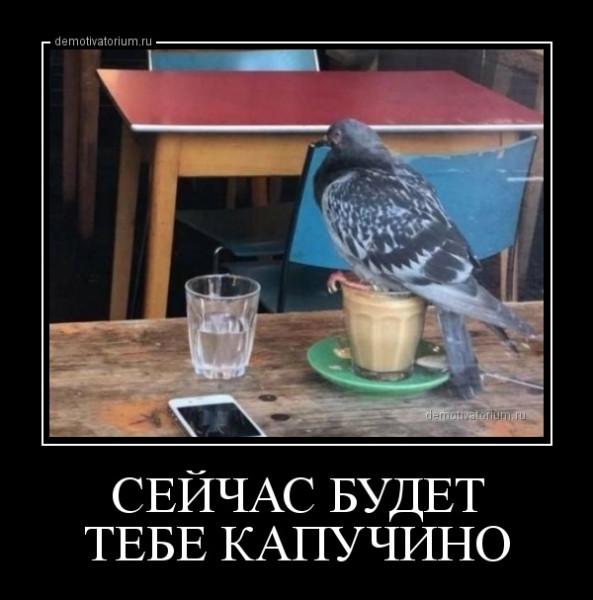 sejchas_budet_tebe_kapuchino_165954.jpg