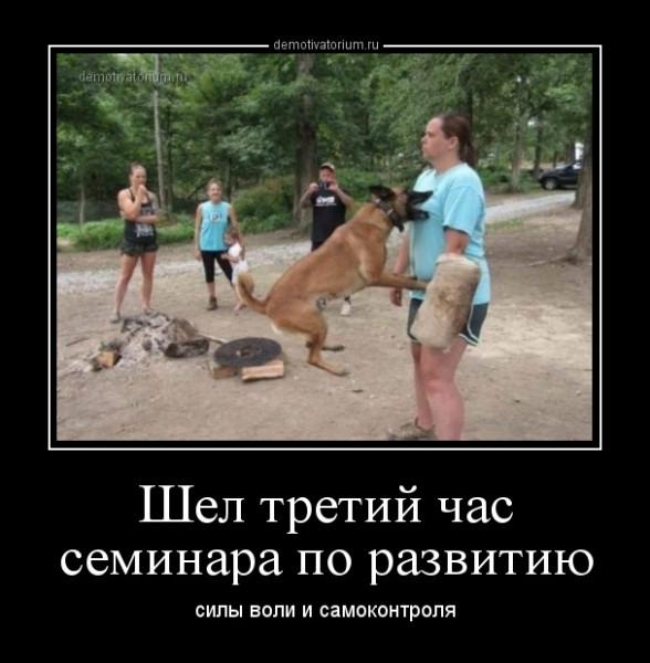 shel_tretij_chas_seminara_po_razvitiu_166077.jpg