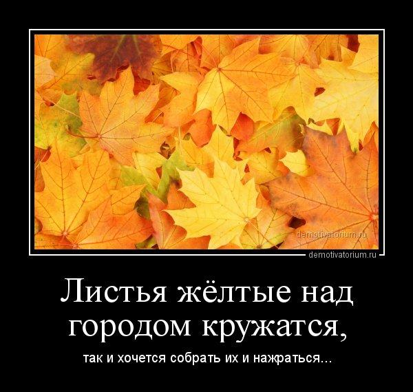 1542701822_demotivatory-5.jpg