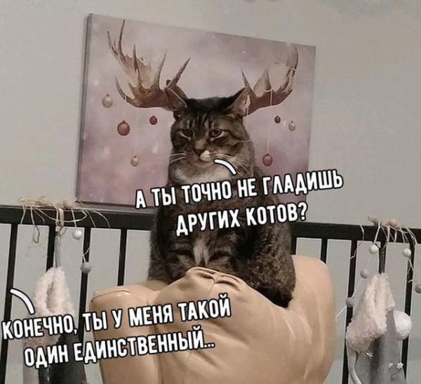 fotopodborka_chetverga_43_foto_11.jpg