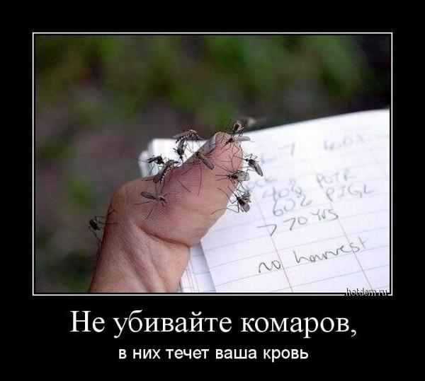 1542874501_demotivatory-7.jpg