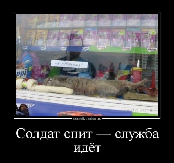 soldat_spit__slujba_idet_167058.jpg