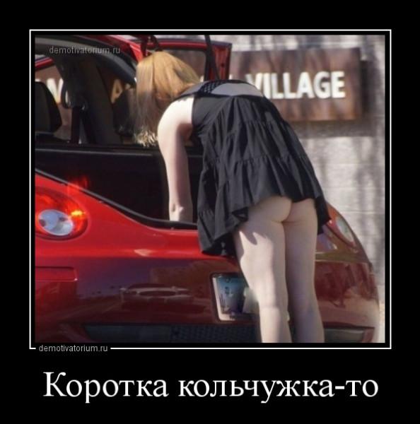 korotka_kolchujkato_167125.jpg