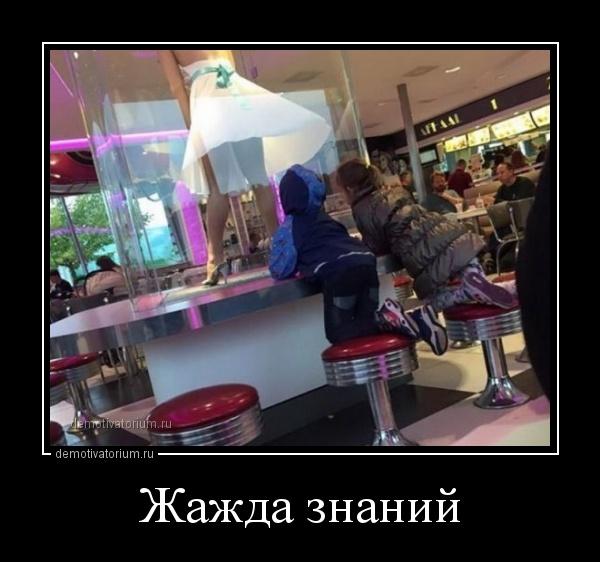 jajda_znanij_167652.jpg