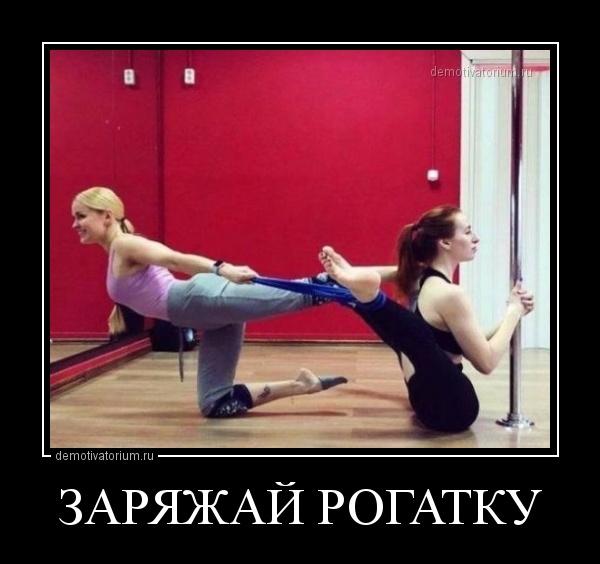 zarjajaj_rogatku_167518.jpg