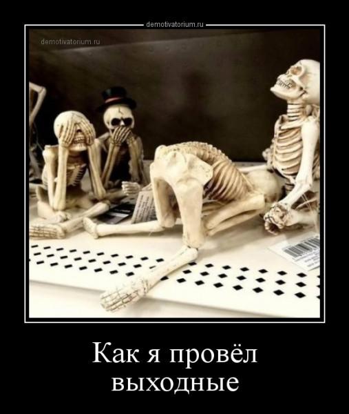 kak_ja_provel_vihodnie_168115.jpg