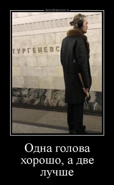 odna_golova_horosho_a_dve_luchshe_168124.jpg
