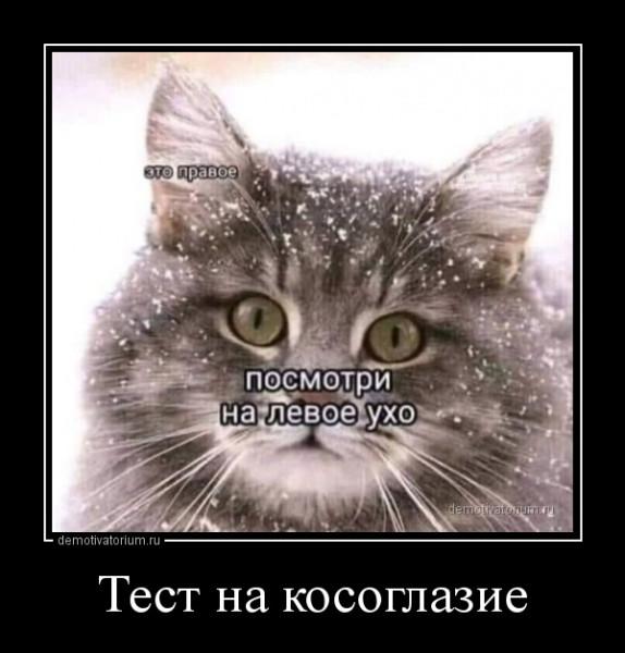 test_na_kosoglazie_168105.jpg