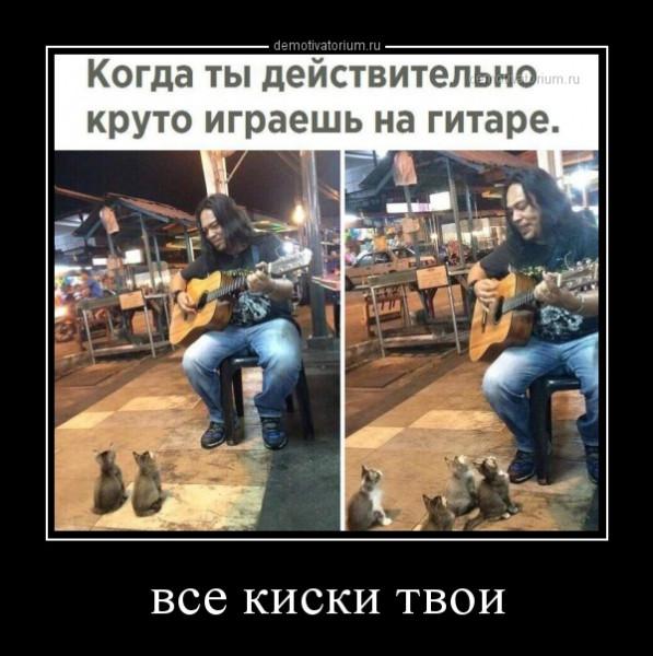 vse_kiski_tvoi_168036.jpg
