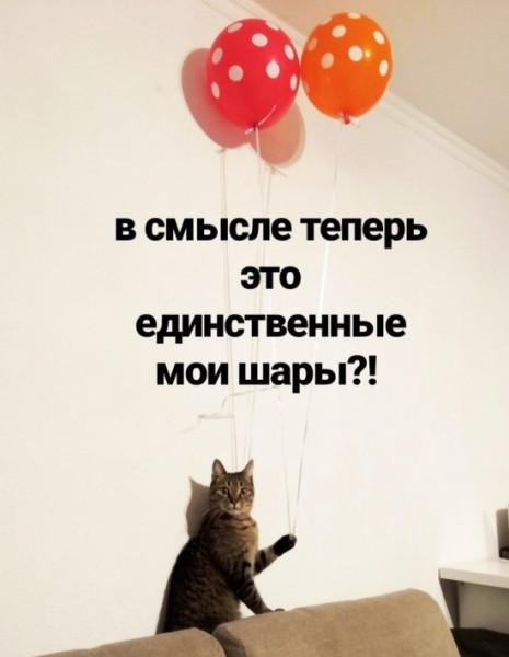 fotopodborka_chetverga_41_foto_3.jpg