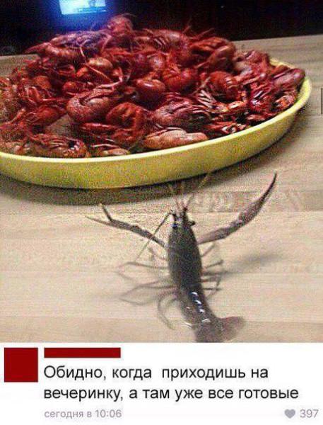 fotopodborka_subboty_40_foto_5.jpg