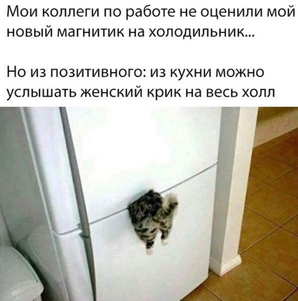 legkijj_jumor_dlja_podnjatija_nastroenija_31_foto_15.jpg