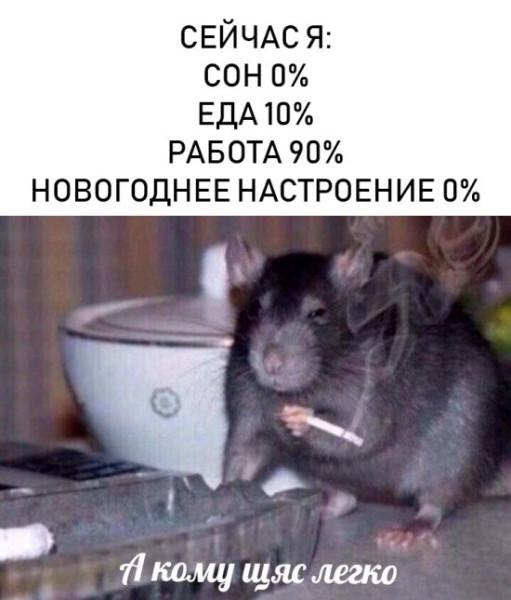 fotopodborka_vtornika_41_foto_9.jpg