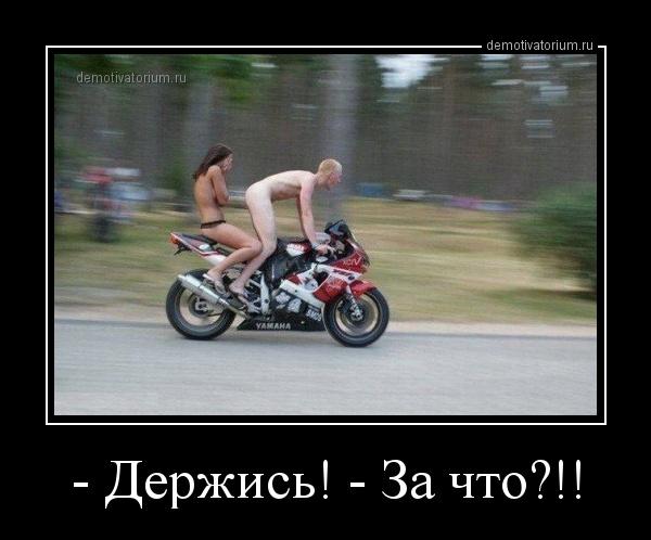 demotivatorium_ru__derjis__za_chto_156494.jpg