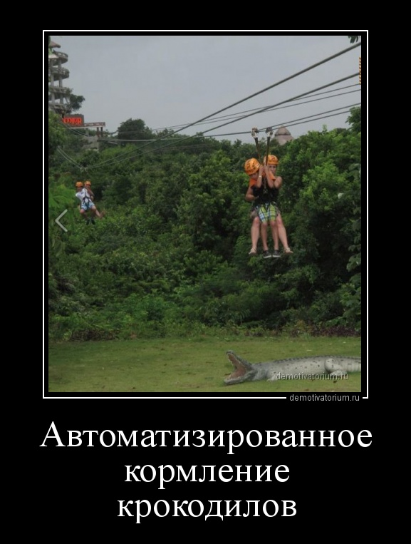 demotivatorium_ru_avtomatizirovannoe_kormlenie_krokodilov_156592.jpg