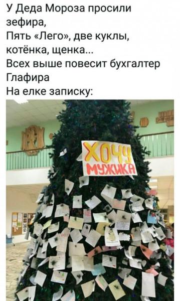 novogodnie_kartinki_shutki_i_prikoly_22_foto_13.jpg