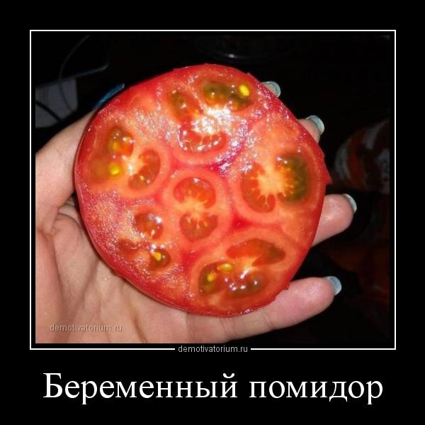 demotivatorium_ru_beremennij_pomidor_156595.jpg
