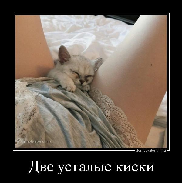 demotivatorium_ru_dve_ustalie_kiski_156590.jpg