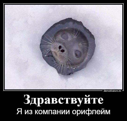 1546243269_demotivatory-12.jpg