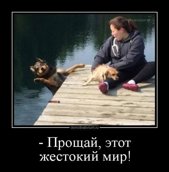 _proshaj_etot_jestokij_mir_168177.jpg
