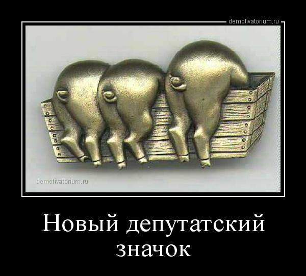 demotivatorium_ru_novij_deputatskij_znachok_156639.jpg