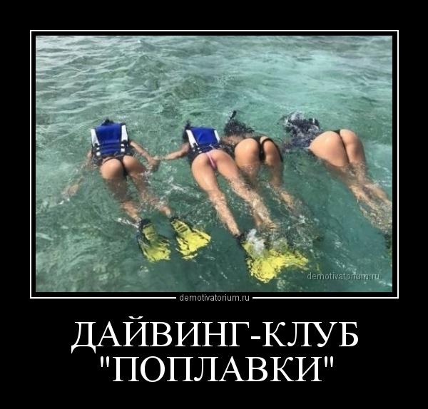 dajvingklub_poplavki_168561.jpg