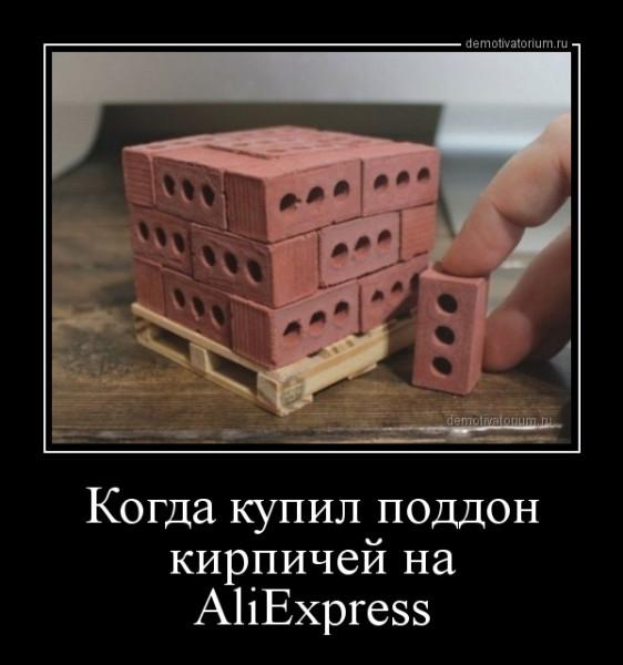 kogda_kupil_poddon_kirpichej_na_aliexpress_168364.jpg