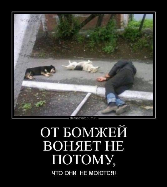 ot_bomjej_vonjaet_ne_potomu_168563.jpg