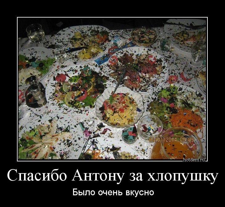 1547713613_demy-13.jpg